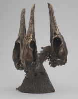 CORMORANT SKULLS CAST IN BRONZE. by Daicelf