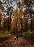 walking in the leaves by scottchurch