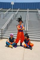 DBZ Cosplay - world tourny by TechnoRanma