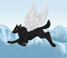 Flying by wolfpup026