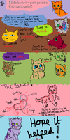 Cat tutorial by MiddyLPS