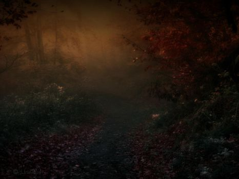 The Fairies Path by Weissglut