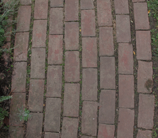 Brick Path by WDWParksGal-Stock