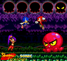 Sonic and Shantae vs Knuckles and Squid Baron by Toad900