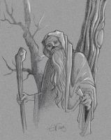 the Old Wizard by rej-