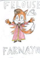Felouse Traditional Coloured by felousefarnayne