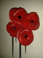 Steel Poppies by LissieBull