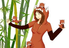 Its all about red pandas by dinamata