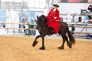 Sidesaddle Friesian_15 by CalyHoney