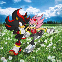 Shadow x Amy running together by sensum