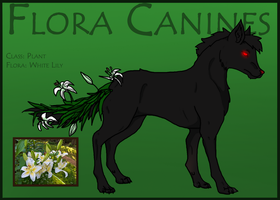 Flora Canine: White Lily 014 by Hippie30199