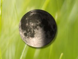 Moon phase by Frogboy