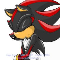 shh, shadow's angsting. by BlizzardWolf