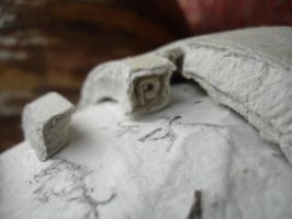 detail from the paper globe with lichen by imoart