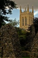 St Edmundsbury Cathedral. by quaddie