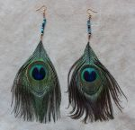 Peacock Feather Earrings by lupagreenwolf