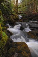 Strontian Falls by craiggriggs