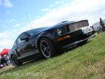 Mustang pecherau by Yapl12virus