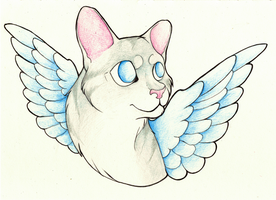 Cat Wings by StormWhiskers