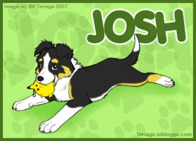 Josh_Commission by Tenaga