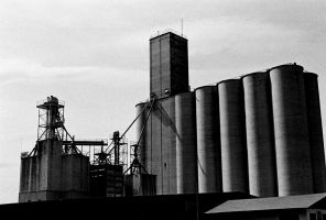 tower of grain by obscure-shadow