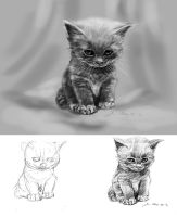 mandatory daily cat sketch 1926 by nosoart