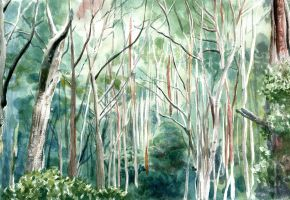 Buangor Forest by oliphantics
