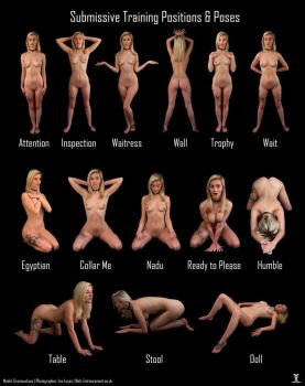 Submissive Pose Chart: Gracieux by LexLucas