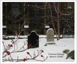 Downtown Pittsburgh Cemetery by Gothic-Mystery