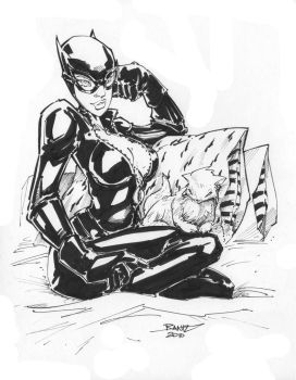 Commission CATWOMAN by rantz