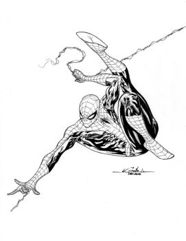Amazing Spidey - dec18th2014 by SpiderGuile