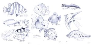 fishies fishies fishies by MondoArt