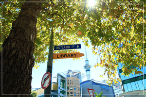 Road to Auckland Library by hihiki