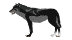 Wolf adoptable 39 _CLOSED_ by thelunapower