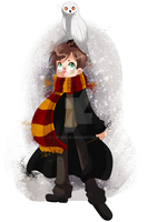 Harry potter by lufidelis