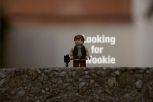 Looking for Wookie by MiqeyM
