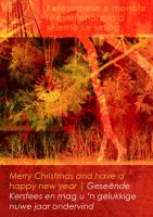 Christmas Greetings from ZA by hippiedesigner