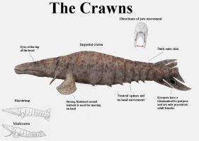 REP: The Crawns by Ramul