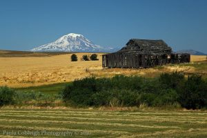 Mt Adams and Barn by La-Vita-a-Bella