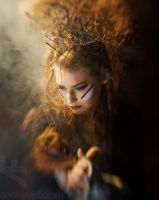 Firestarter by andrewfphoto