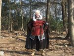 Full Viking Denmark Cosplay by Cinos-Sirflas
