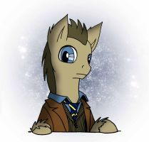 10th Doctor Whooves by SilverwolvesForever
