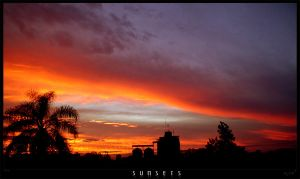 SUNSETS 4-4 by JOX