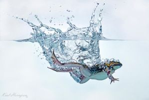 Splash Frog by karling69