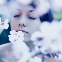 Surrounded by spring by ruuca