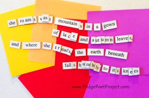 The Daily Magnet #209 by FridgePoetProject