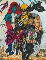 Days of Future Past Illustrated - Markers by magnumpeanut