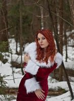 Snow Maiden-II by SandraVogel