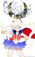Sailor Moon The Movie Poster Manga Style by MoonPrincessNikoru