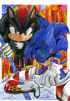 Sonic Hurt With Shadow by SWIFT-SONIC